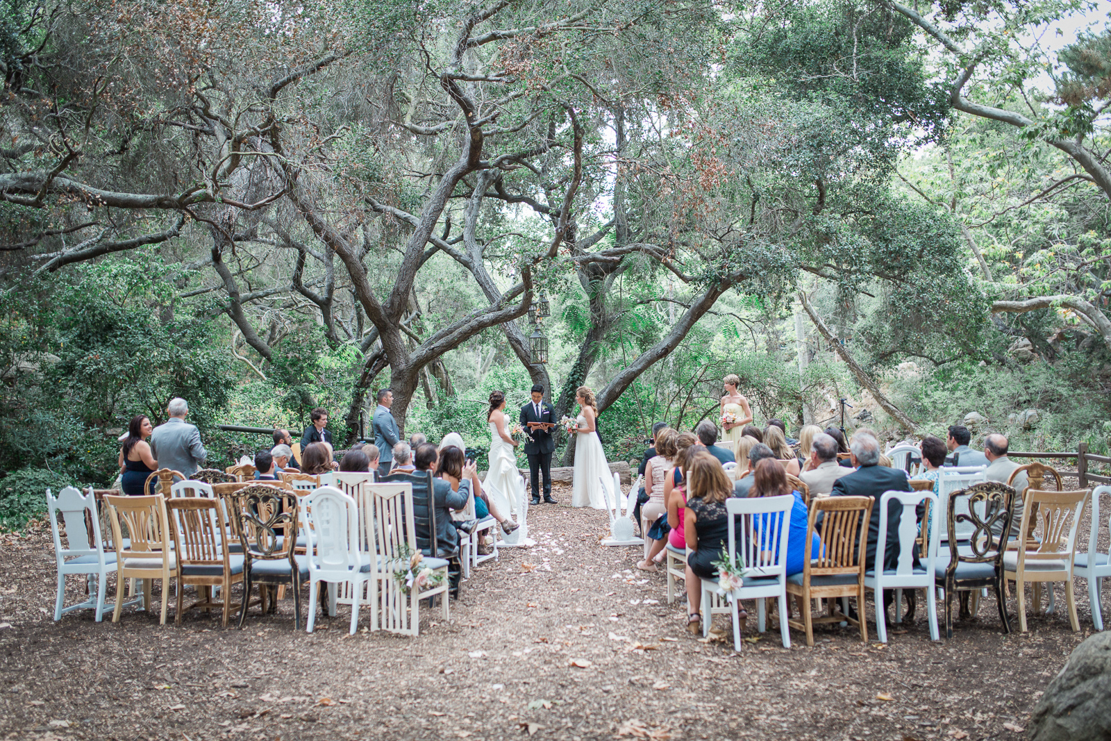 Two brides on during their wedding ceremony in Santa barbara - Beautiful bridal portrait of two brides on their wedding day in Santa barbara - gay weddings